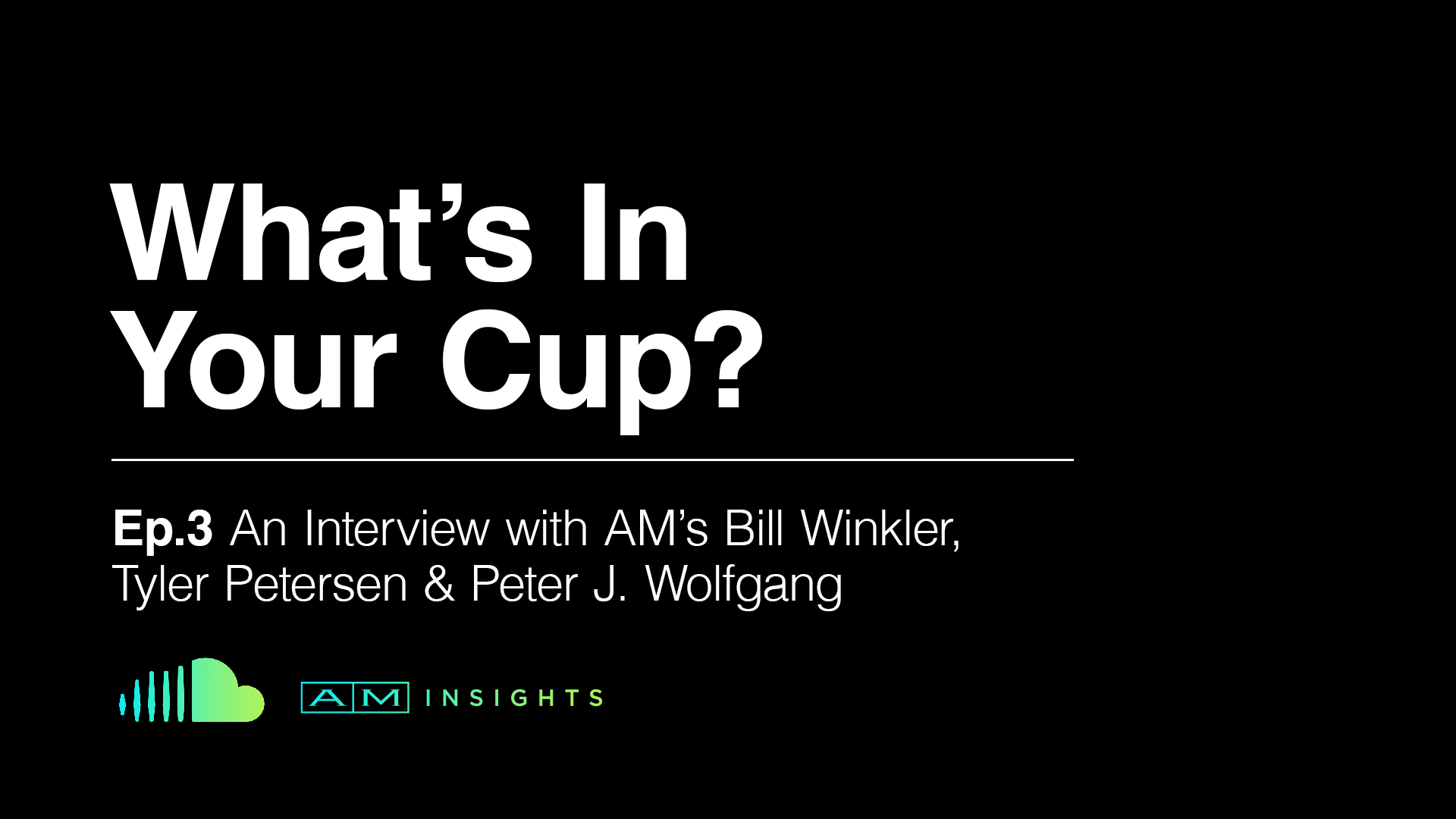 AM INSIGHTS PODCAST: EPISODE 3